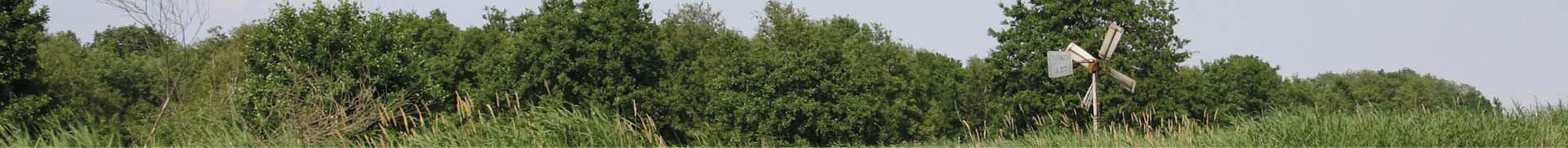 Bungalow huren in Overijssel