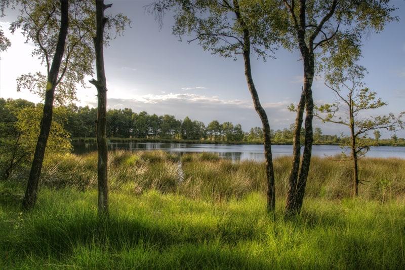 Vakantiehuis-13-personen-Brabant