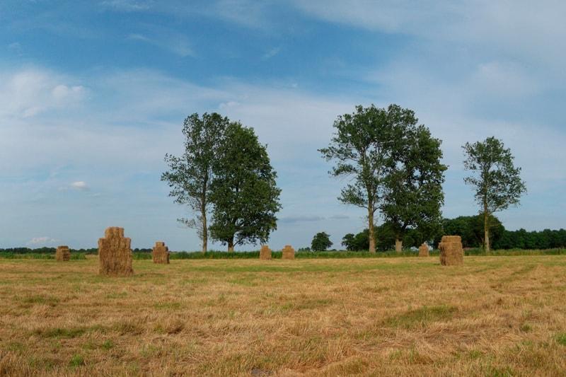 Vakantieboerderij-Drenthe