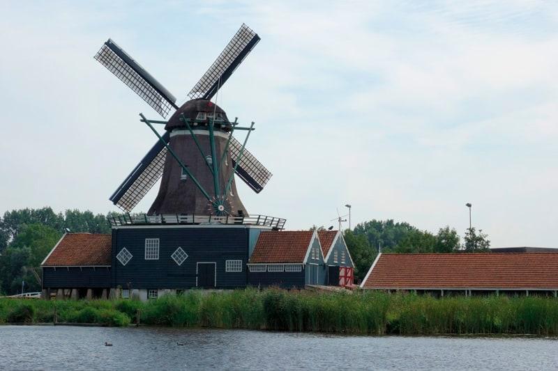 Vakantieboerderij-Friesland
